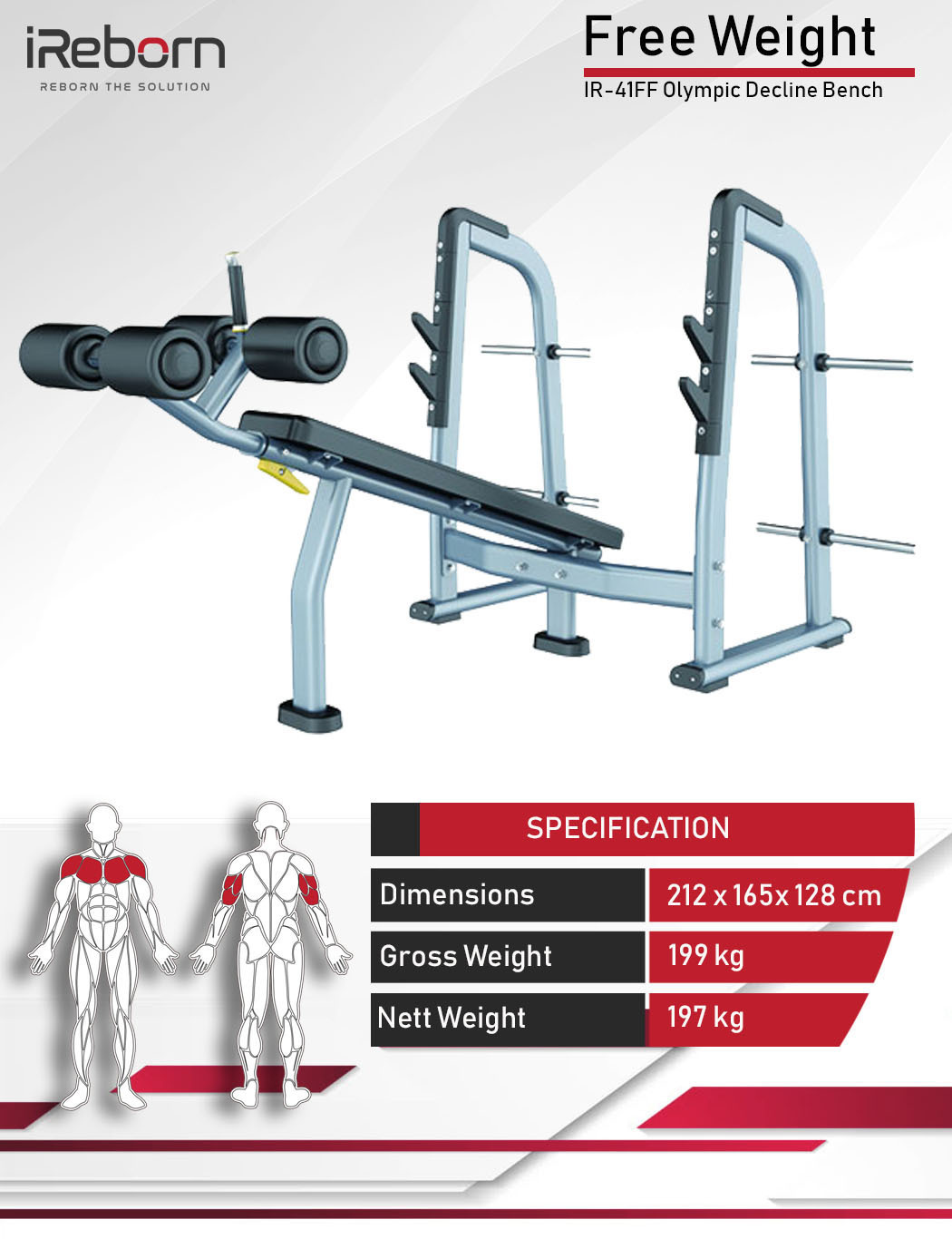 IR-41FF Olympic Decline Bench 10