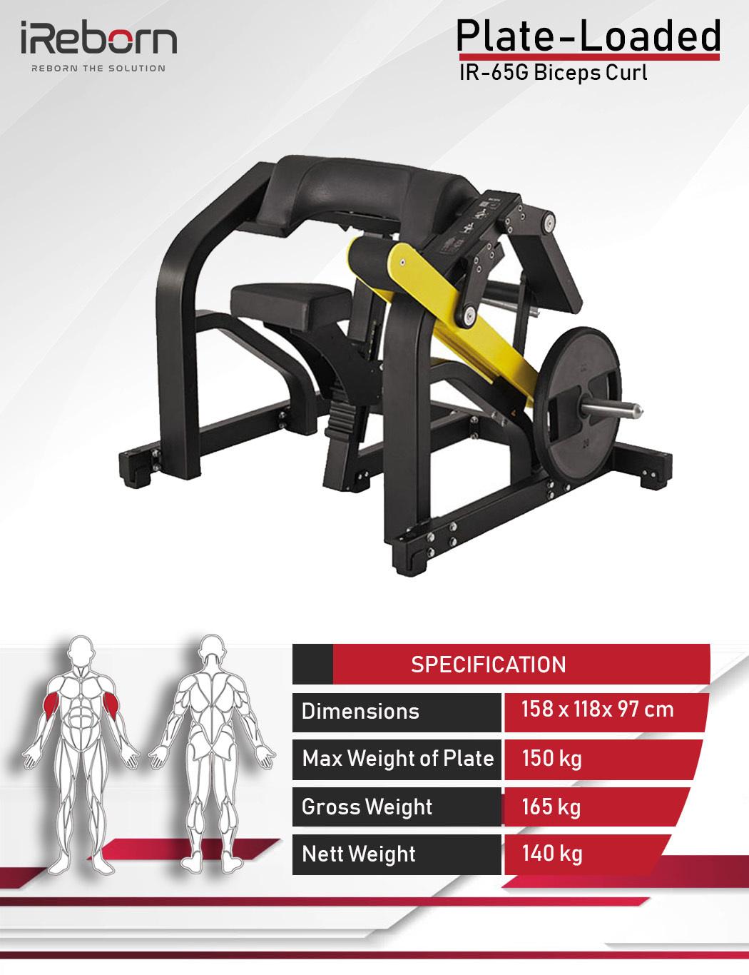 IR-65G Biceps Curl 10