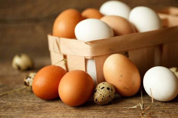 Benarkah Protein Telur Dapat Memperbesar Otot? 2
