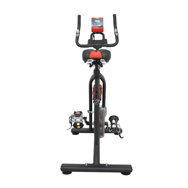 iPedro Spin Bike 4