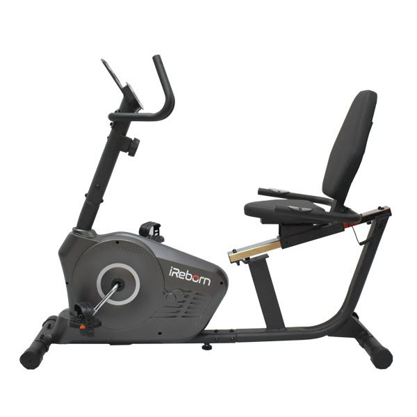 Torva Recumbent Bike 2