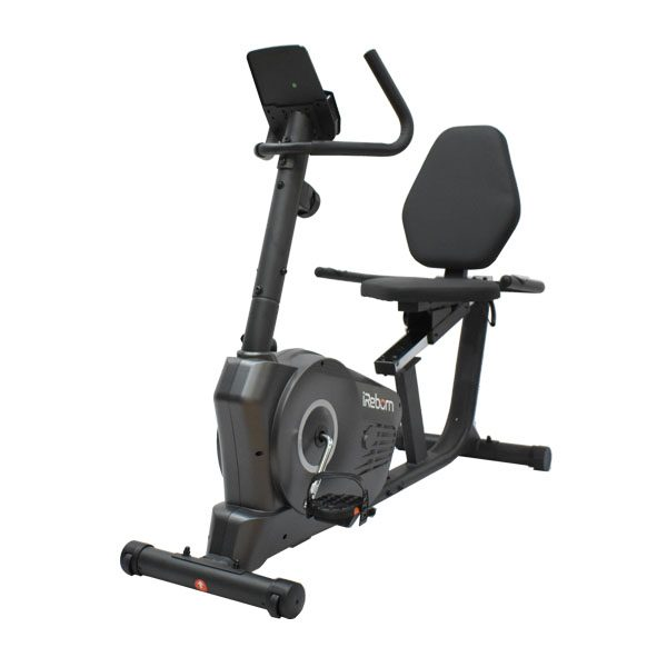 Torva Recumbent Bike 3